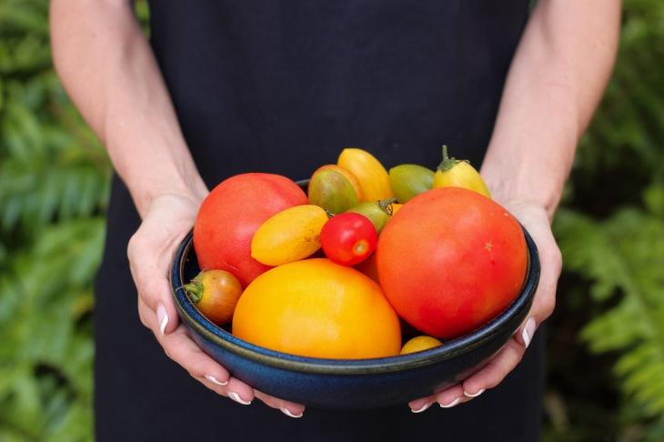 tomato planting tips